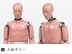 ANTHROPOMORPHIC TEST DEVICES DUMMY